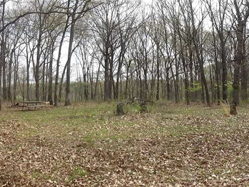 Secluded 87 Acres in Camden County : Camdenton : Camden County : Missouri