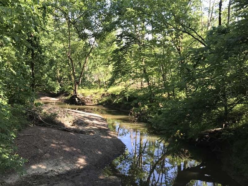 45.2 Acres Great Hunting in Henry : Calhoun : Henry County : Missouri