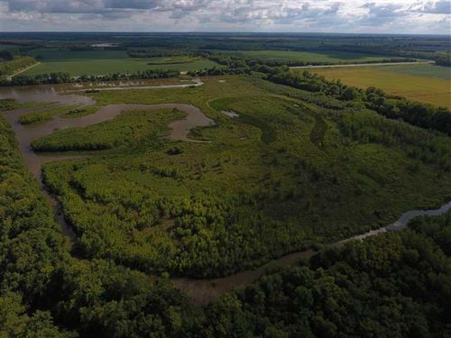 Reduced Price, 121 Acre Wrp Bucks : Wheeling : Livingston County : Missouri