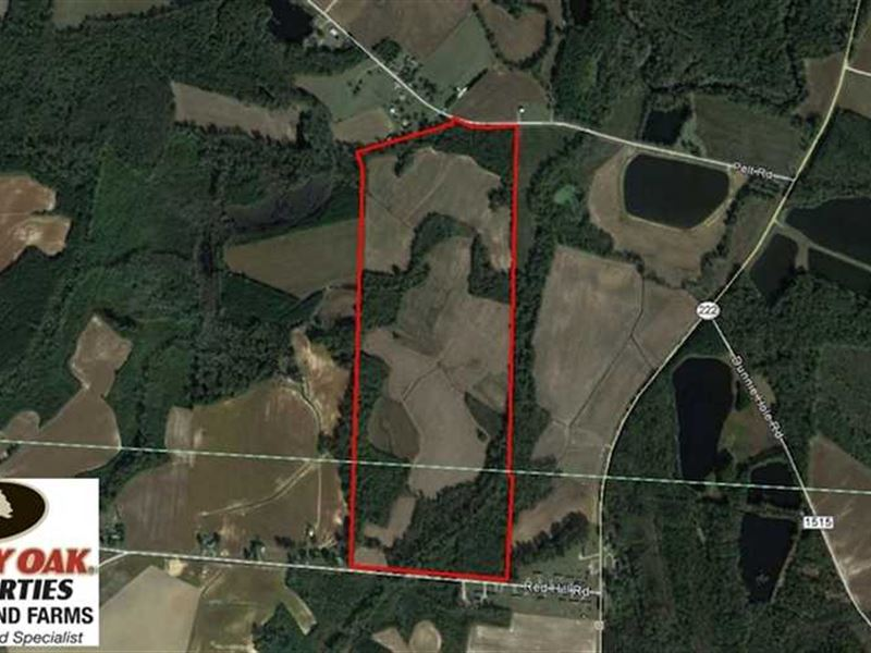 125 Acres of Farm And Timberland : Stantonsburg : Wilson County : North Carolina