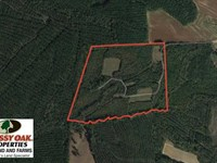 60 Acres of Farm And Timber Land : Halifax : Halifax County : North Carolina