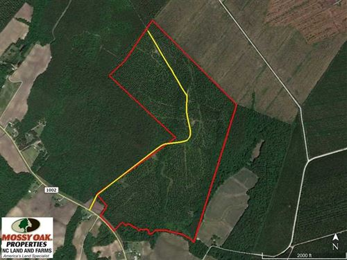 Under Contract, 217 ac Timber And : Trenton : Jones County : North Carolina