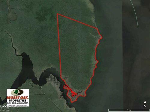 998 Acres of Riverfront Hunting LA : Shiloh : Camden County : North Carolina