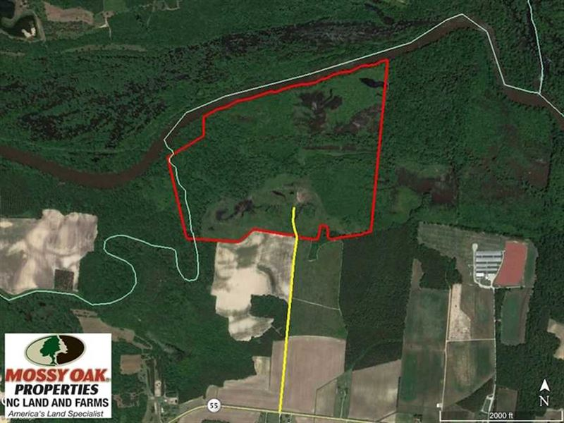 Reduced, 172 Acres of Riverfront : Dover : Craven County : North Carolina