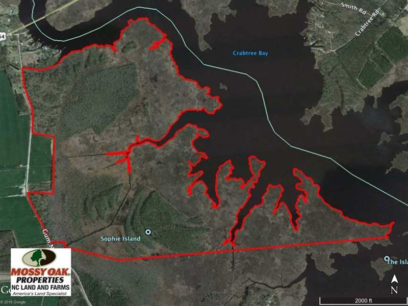 Under Contract, 547 ac Waterfront : Belhaven : Beaufort County : North Carolina