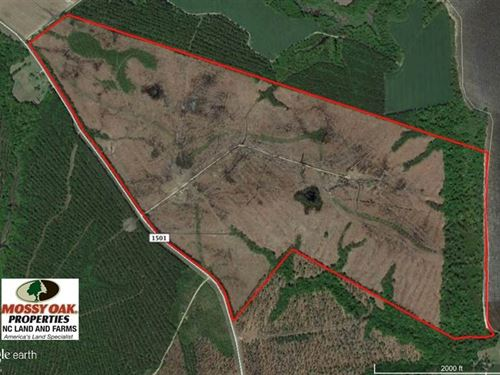 Under Contract, 300 ac Riverfront : Merry Hill : Bertie County : North Carolina