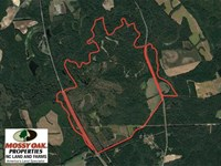 Reduced, 587 Acre Buffalo Creek : Clinton : Sampson County : North Carolina