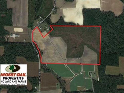 Reduced, 92.6 Acres of Farm And : Lucama : Wilson County : North Carolina