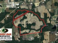 Reduced, 347.8 Acres of Farm And : Lucama : Wilson County : North Carolina