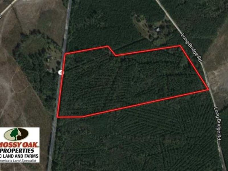 Under Contract, 51.44 Acres of Hu : Littleton : Halifax County : North Carolina