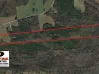 40.49 Acres of Timber And Hunting : Manson : Warren County : North Carolina