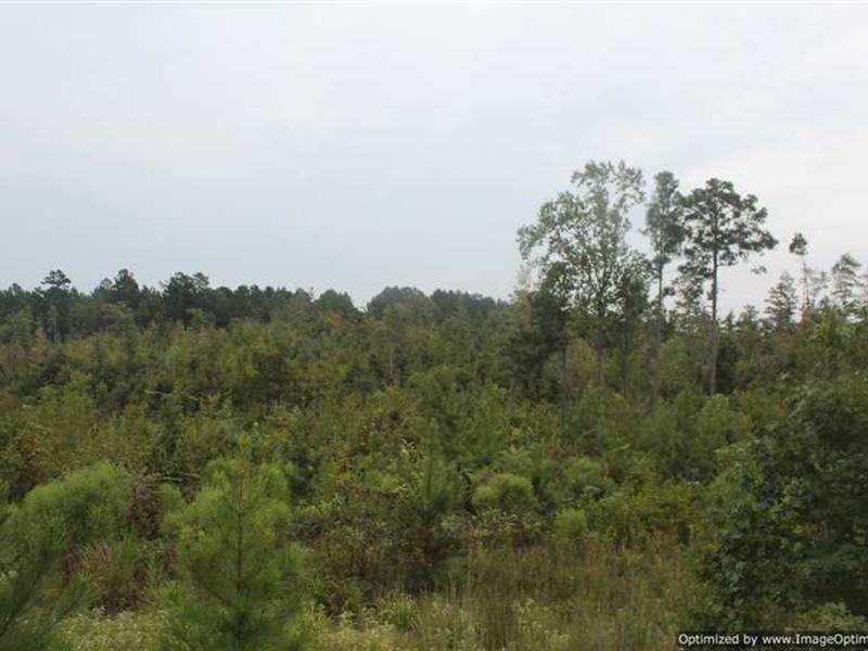 104 Acre Recreational Tract in : Kosciusko : Attala County : Mississippi