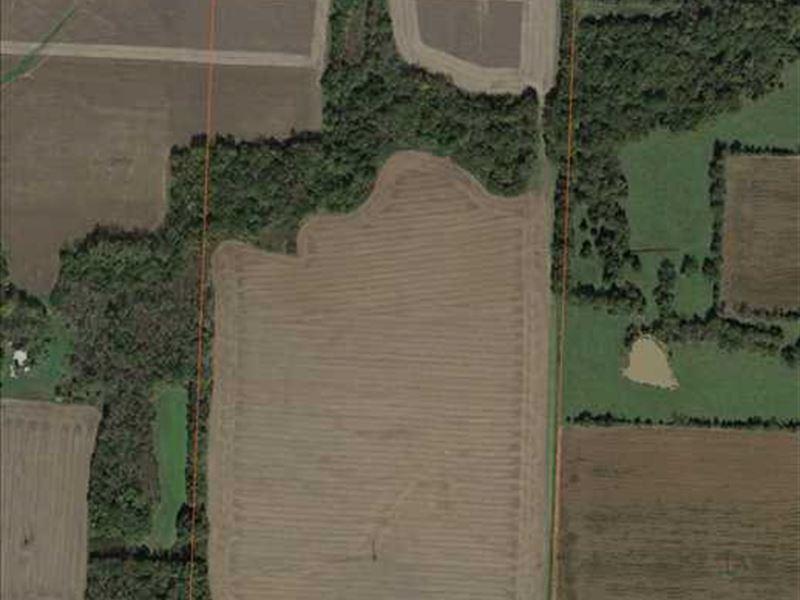 80 Acre Tillable Farm Lincoln, Mo : Lincoln : Benton County : Missouri