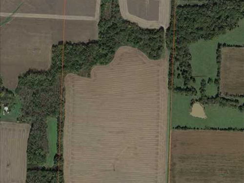 80 Acre Tillable Farm Lincoln, Mo : Lincoln : Benton County : Missouri