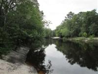 Alapaha River Tract 51 Acres : Lakeland : Lanier County : Georgia