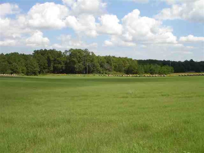 30 Acres Of Farm Land For Sale In