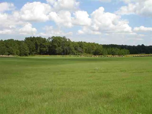 30 Acres of Farm Land For Sale in : Bridgeboro : Worth County : Georgia