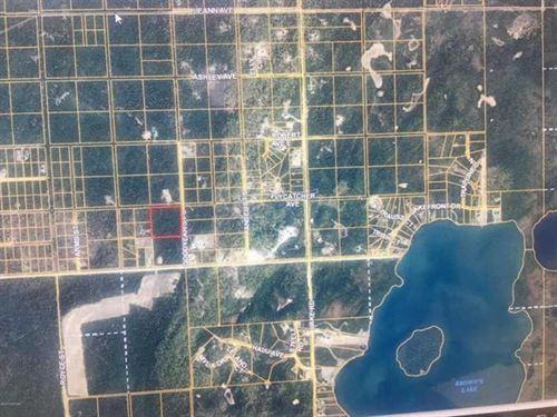 Your Dream Your Way, There Are no : Soldotna : Kenai Peninsula Borough : Alaska