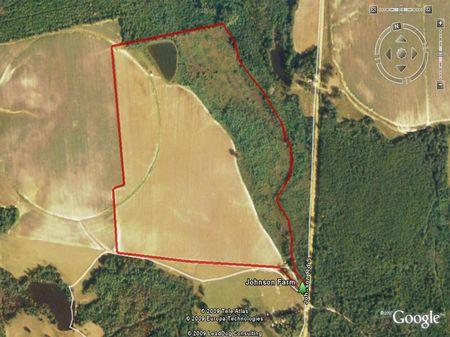 92 Acre Farm W/ Pond : Millen : Jenkins County : Georgia