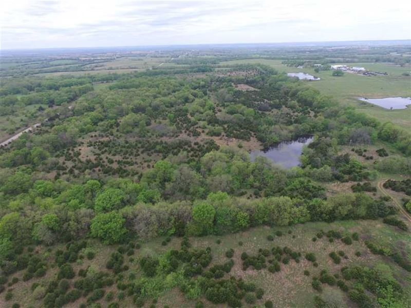 46 Acres Hunting And Home Site For : Cherryvale : Montgomery County : Kansas
