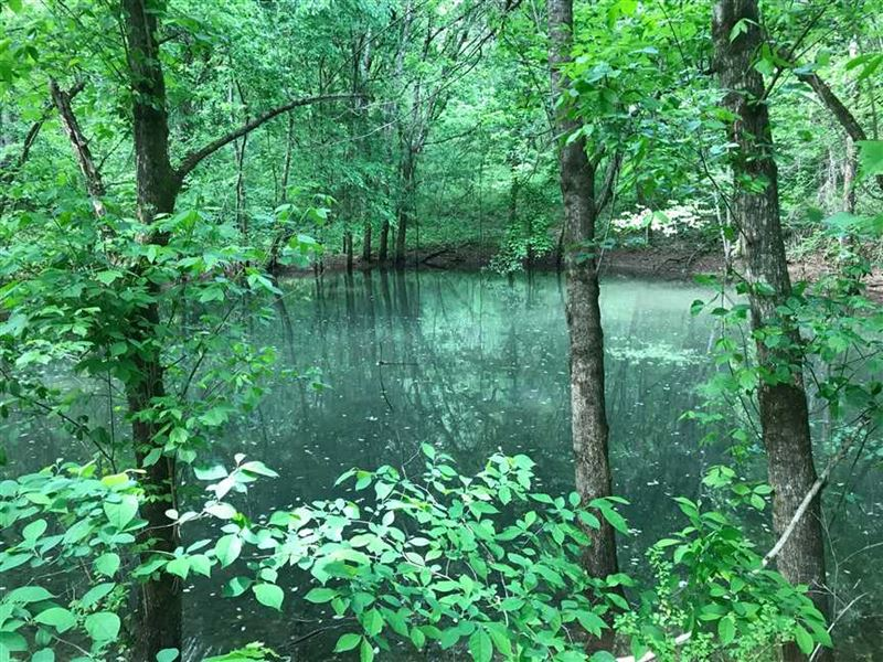 For Sale 71.78 Acres of Quiet And : Buffalo Valley : Smith County : Tennessee