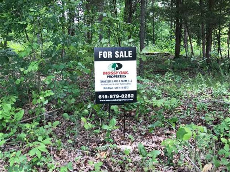 94 Acre Hunting Tract in Fort Camp : Indian Mound : Stewart County : Tennessee