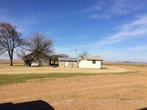The Monroe Farm, Moro AR : Moro : Lee County : Arkansas