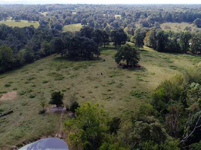 90 Acres on Weir Rd, Fayetteville : Fayetteville : Washington County : Arkansas