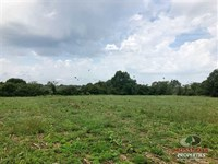 40 Acres of Mixed Timber / Pasture : Grovespring : Wright County : Missouri