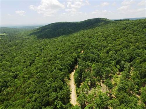 760 Acre Farm With Mature Timber : Woodville : Jackson County : Alabama