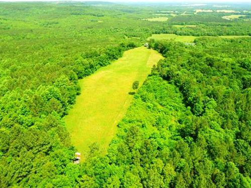 Colbert County Turnkey Timberland : Tuscumbia : Colbert County : Alabama
