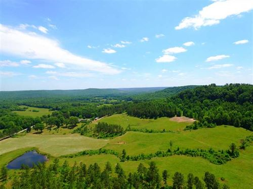 Timber And Pastureland With Large : Tuscumbia : Colbert County : Alabama