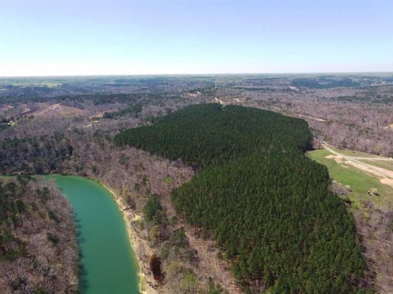 74 Secluded Tract Near Double : Double Springs : Winston County : Alabama