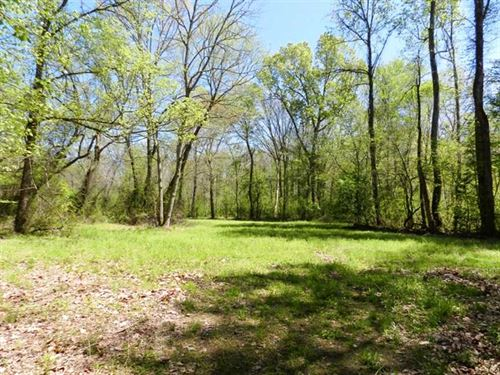 Cypress Creek Timber & Wildlife En : Florence : Lauderdale County : Alabama