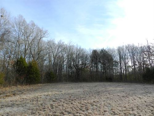 115 Acres, Excellent Pasture And : Muscle Shoals : Colbert County : Alabama