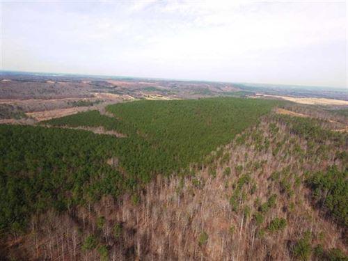 Freedom Hills 2 : Cherokee : Colbert County : Alabama