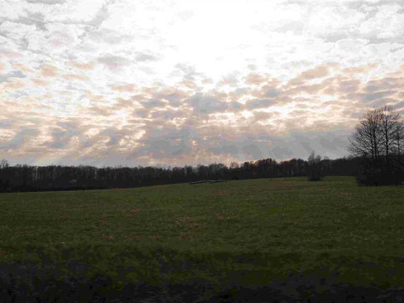 SR 700 - 137 Acres - Portage County : Windham : Portage County : Ohio