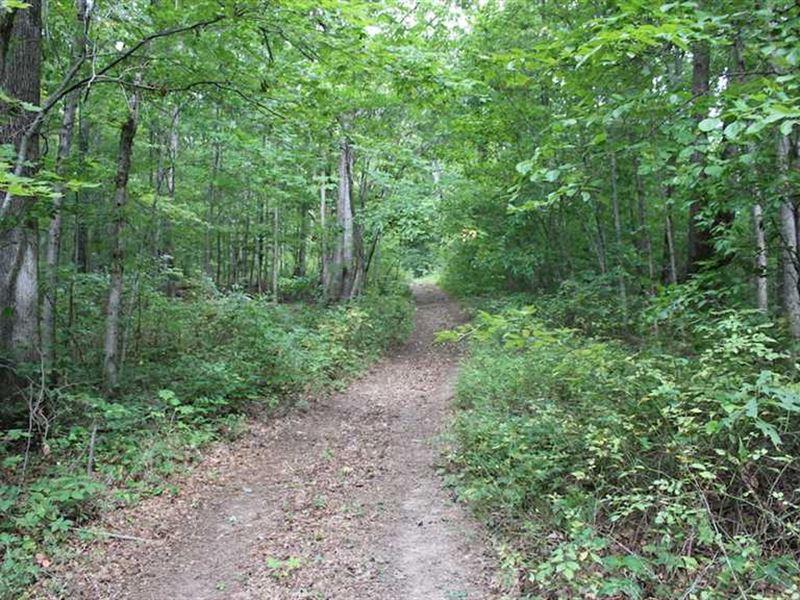 SR 683 - 84 Acres - Vinton County : McArthur : Vinton County : Ohio