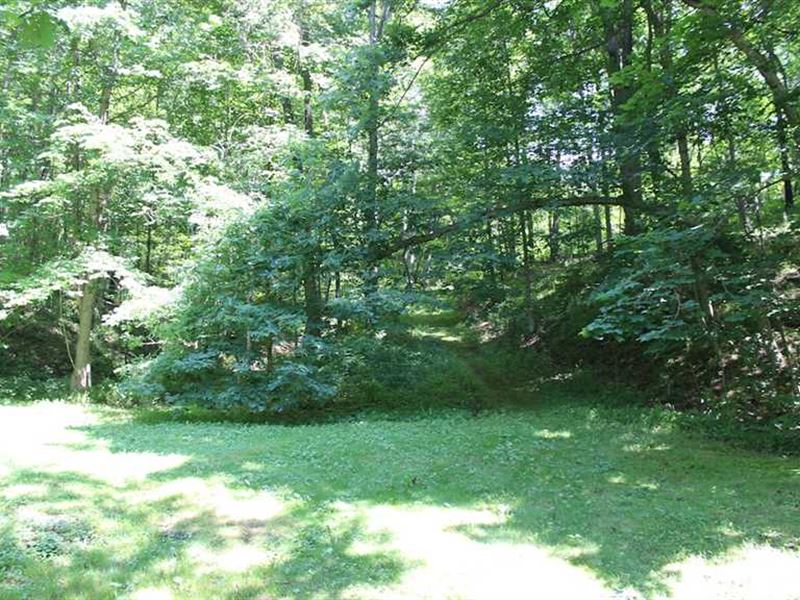 Jockey Hollow Rd - 17 Acres - Harr : Flushing : Harrison County : Ohio