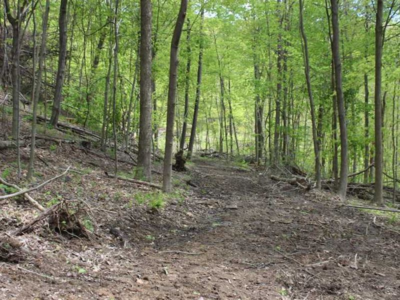 Tunnel Hill Rd - 68 Acres - Harris : Dennison : Harrison County : Ohio