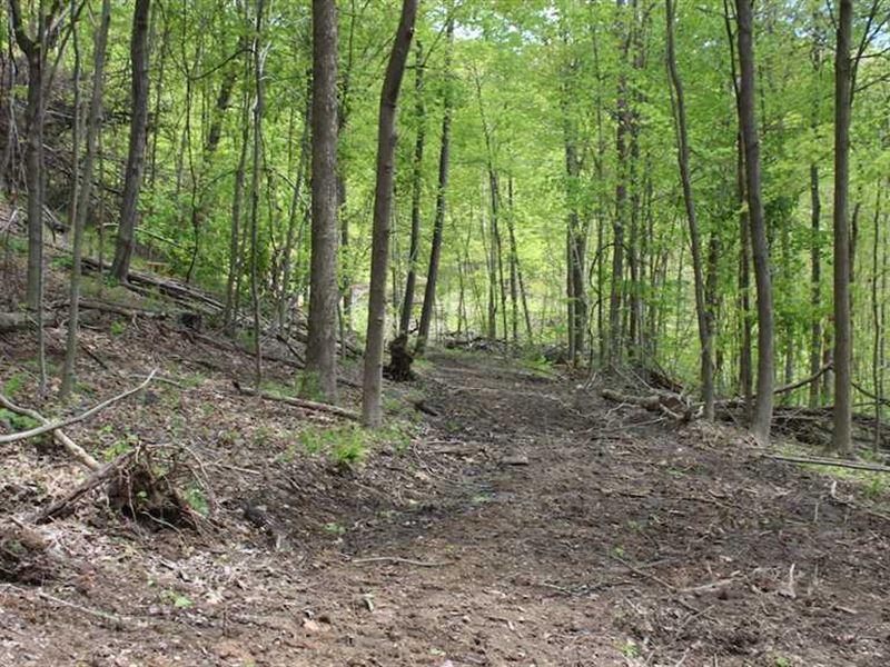 Tunnel Hill Rd - 68 Acres - Harris : Dennison : Harrison County : Ohio