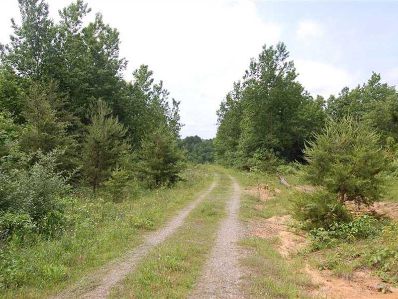Blackfork-Firebrick Rd - 45 Acres : Oak Hill : Lawrence County : Ohio