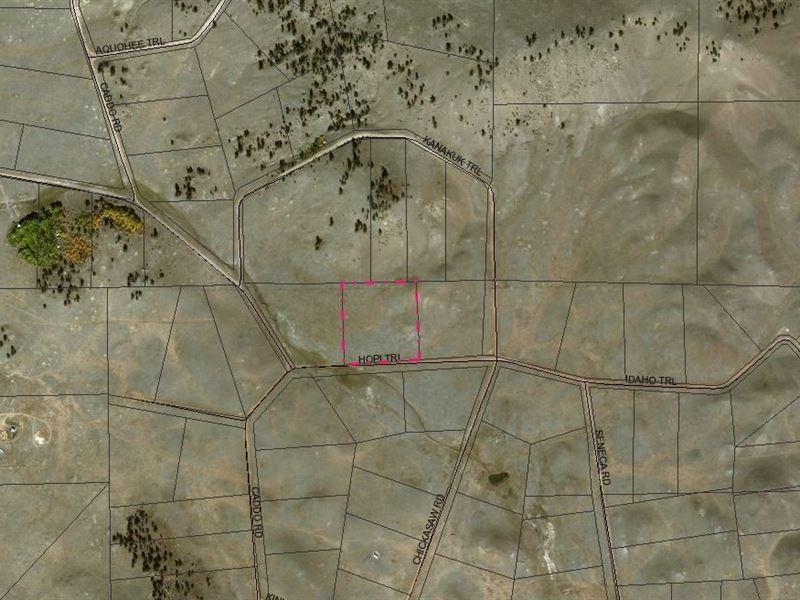 5.8 Acres In Hartsel, CO : Hartsel : Park County : Colorado