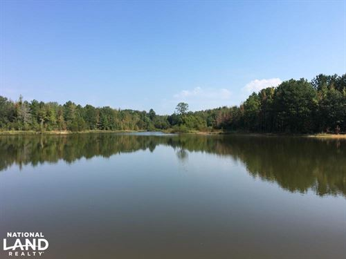 Recreational Tract With Pond Indus : Kinards : Laurens County : South Carolina