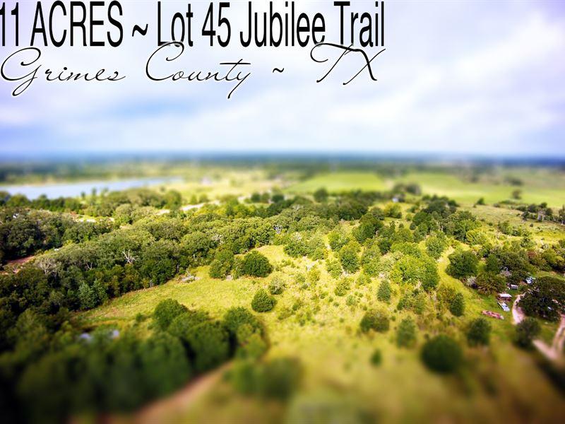 11 Acres In Grimes County : Iola : Grimes County : Texas