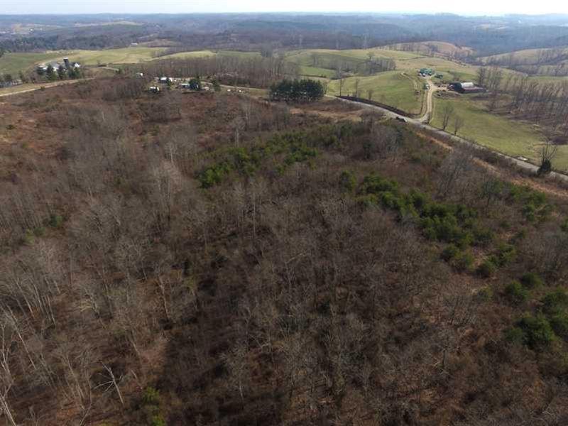 Deemer Rd - 62.99 Acres - Jackson : Jackson : Jackson County : Ohio