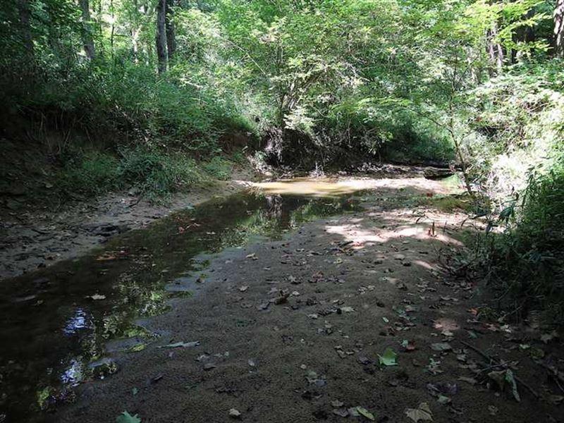 Pleasant Valley Rd - 61 Acres - Ga : Vinton : Gallia County : Ohio