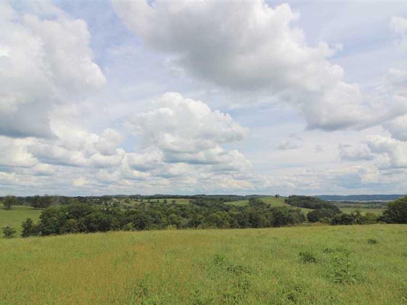 Raiders Rd - 75 Acres - Muskingum : Dresden : Muskingum County : Ohio