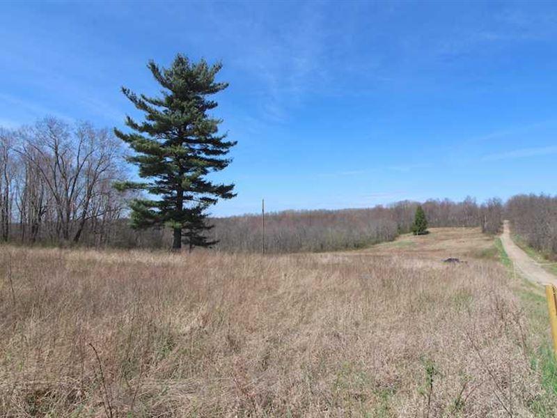 TR 29 - 75 Acres - Coshocton County : Warsaw : Coshocton County : Ohio
