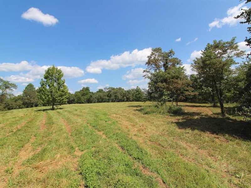 Woodie Rd - 177 Acres - Gallia Cou : Patriot : Gallia County : Ohio